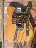 Leopard Pick Guards